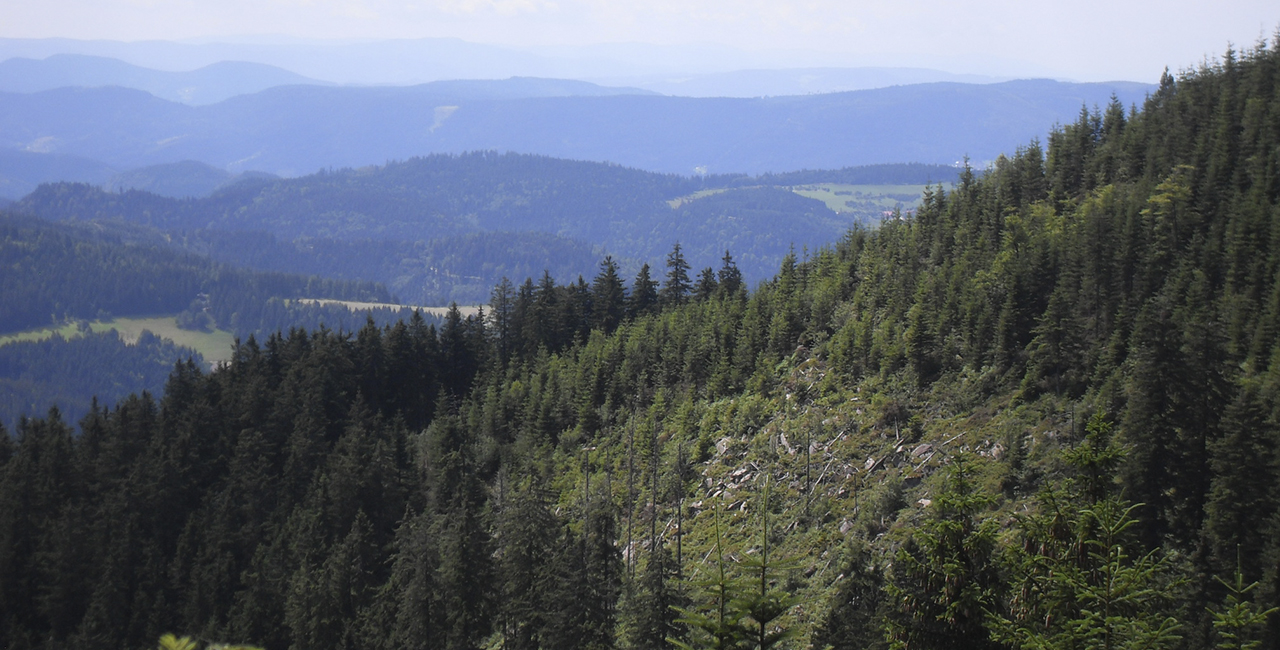 Erlebniswandern in Forbach, Raum Baden-Baden
