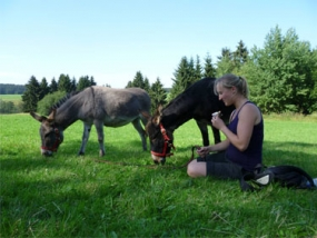 Esel-Tour in Clausthal-Zellerfeld, Niedersachsen