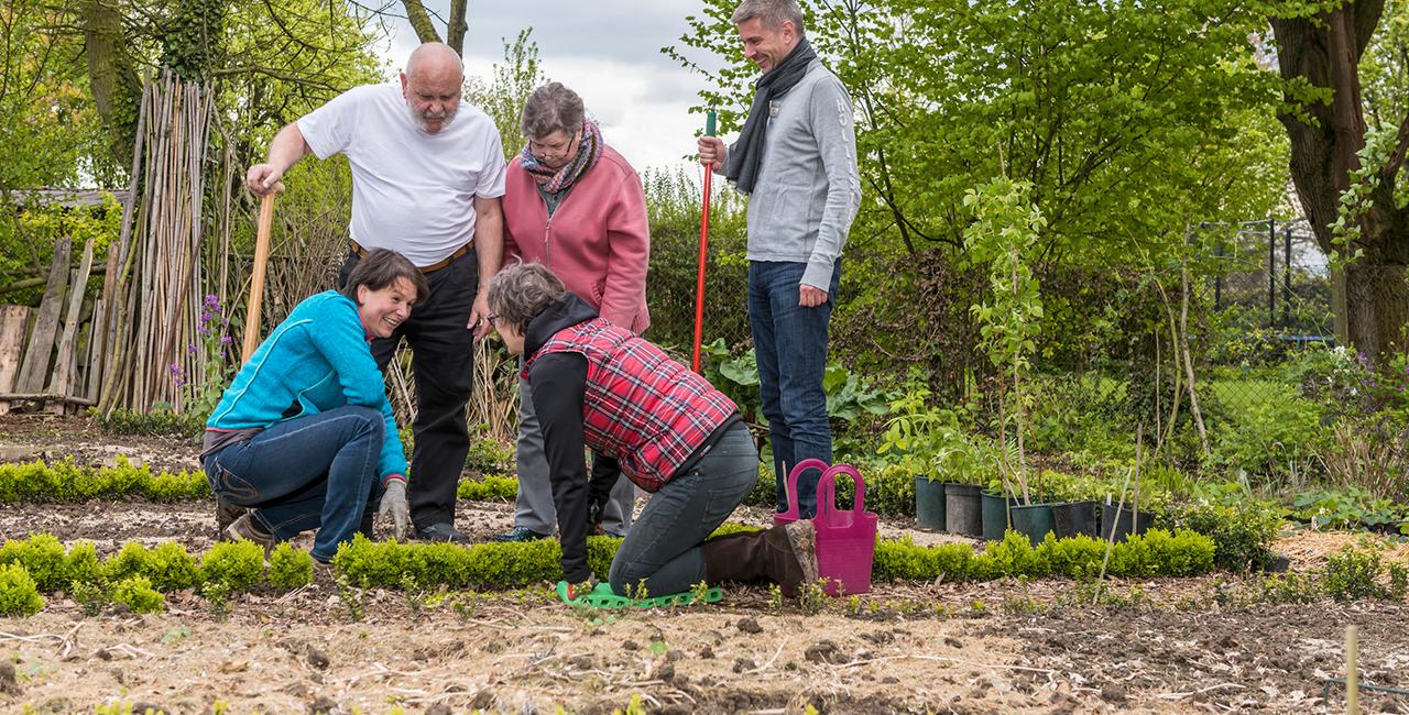 Gärtnern für Einsteiger in Frankfurt am Main