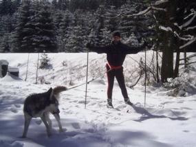 Husky Langlauftour in Benneckenstein im Harz, Sachsen-Anhalt