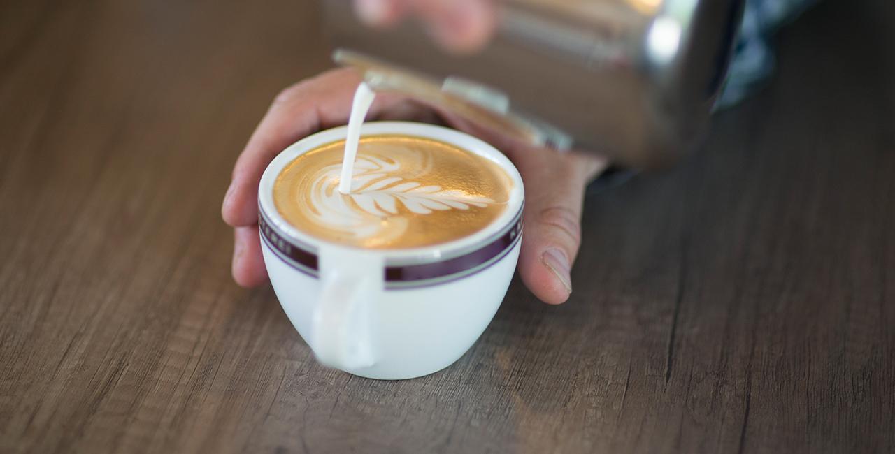 Bariasta-Kurse und Kaffee-Seminare