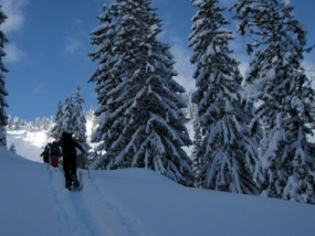 Schneeschuh Wanderung in Laubenstein am Chiemsee, Raum Rosenheim