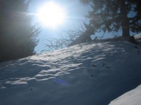 Schneeschuh Wanderung Schnuppertour in Oberstdorf, Allgäu - Erlebnis Geschenke
