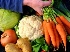 Vegetarischer Kochkurs in Göttingen, Niedersachsen - Erlebnis Geschenke