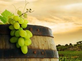 Weinseminar Französische Weine in Fürth, Bayern - Erlebnis Geschenke