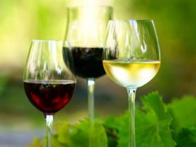 Weinseminar in Biberach, Raum Ulm in Baden-Württemberg - Erlebnis Geschenke
