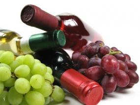 Weinseminar Italienische Weine in Fürth, Bayern - Erlebnis Geschenke