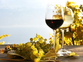 Weinseminar Spanische Weine in Biberach, Raum Ulm - Erlebnis Geschenke