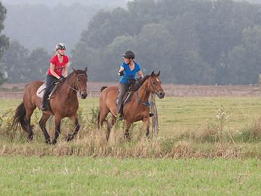 Pferde Kurs für zwei Moisburg - Erlebnis Geschenke